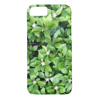 Capas de iphone verdes da folha