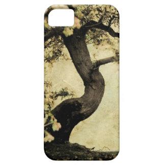 capas de iphone, vintage, flor, bonsei, japão capa barely there para iPhone 5