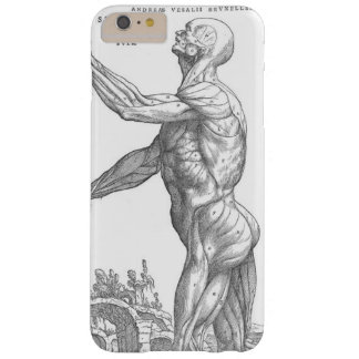Capas iPhone 6 Plus Barely There Homem anatômico
