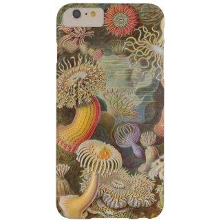 Capas iPhone 6 Plus Barely There Mar Anenome por Ernst Haeckel