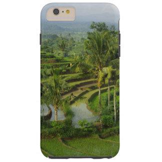 Capas iPhone 6 Plus Tough Bali - ricefields e palmas novos do terraço