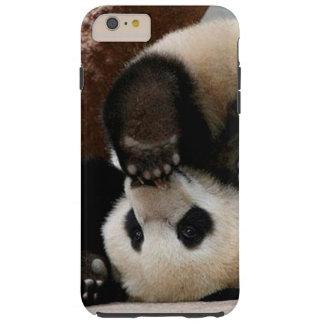 Capas iPhone 6 Plus Tough Pandas do bebê que jogam - panda bonito da panda
