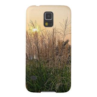 Capas Par Galaxy S5 Junco no por do sol