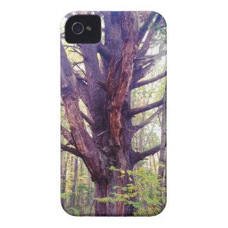 Capas Para iPhone 4 Case-Mate Árvore enevoada