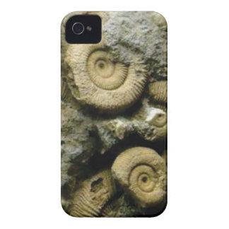 Capas Para iPhone 4 Case-Mate círculos de caracóis fósseis