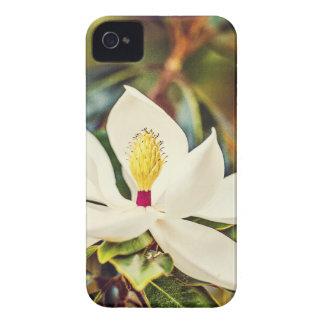 Capas Para iPhone 4 Case-Mate Magnólia lindo de Mississippi