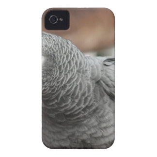 Capas Para iPhone 4 Case-Mate Papagaio
