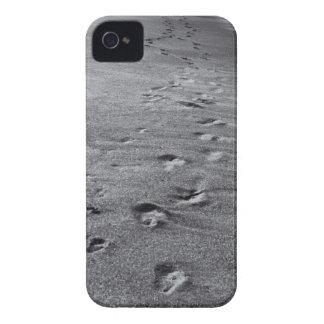 Capas Para iPhone 4 Case-Mate pegadas da natureza