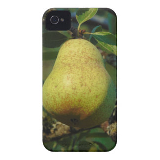 Capas Para iPhone 4 Case-Mate Pera