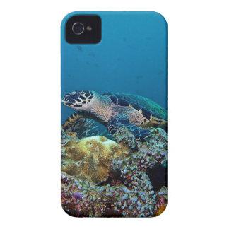 Capas Para iPhone 4 Case-Mate Tartaruga de Hawkbill