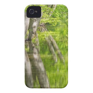Capas Para iPhone 4 Case-Mate Troncos de árvore da faia com água na floresta do