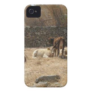Capas Para iPhone 4 Case-Mate Vacas
