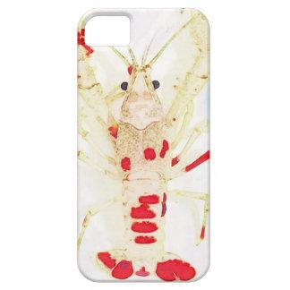 Capas Para iPhone 5 15873579_1416330921732017_2539621766324574947_n.jp
