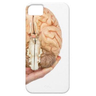 Capas Para iPhone 5 A mão guardara o cérebro humano modelo no fundo