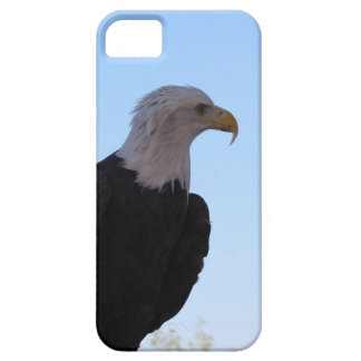Capas Para iPhone 5 Águia americana