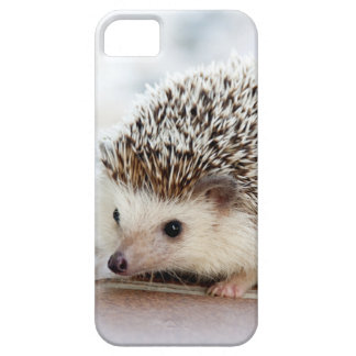 Capas Para iPhone 5 Animal bonito do ouriço do bebê