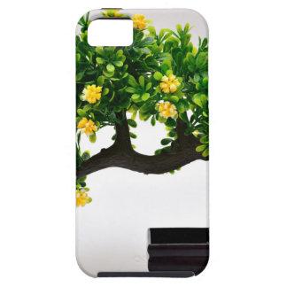 Capas Para iPhone 5 Árvore dos bonsais