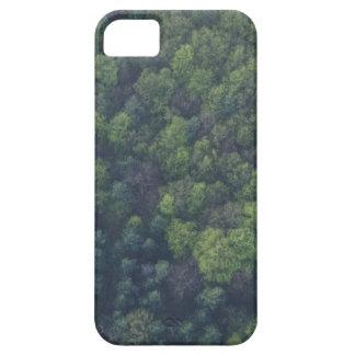 Capas Para iPhone 5 Árvores verdes