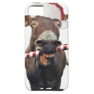 Capas Para iPhone 5 Asno do Natal - asno do papai noel - papai noel do