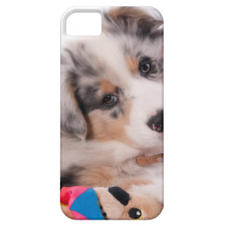Capas Para iPhone 5 Australian shepherd puppy