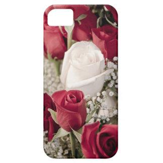 Capas Para iPhone 5 buquê das rosas vermelhas com o um rosa branco no