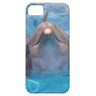 Capas Para iPhone 5 Cabeça do golfinho de bottlenose