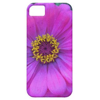 Capas Para iPhone 5 Caixa roxa bonito do iPhone 5 da flor
