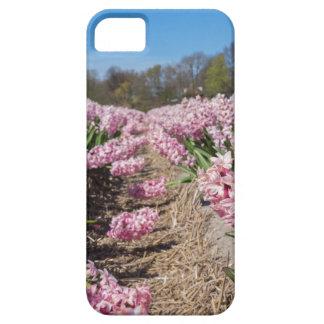 Capas Para iPhone 5 Campo de flores com os jacintos cor-de-rosa em