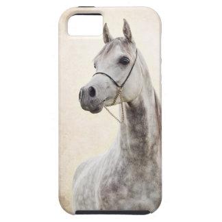 Capas Para iPhone 5 coleção do cavalo. árabe
