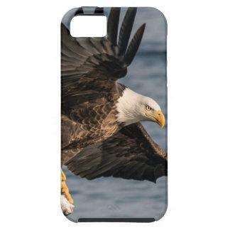 Capas Para iPhone 5 Comida de travamento da águia americana