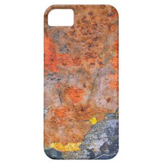 Capas Para iPhone 5 Cores da oxidação 065, Oxidação-Arte