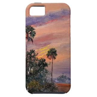 Capas Para iPhone 5 Cores do por do sol de Florida