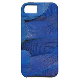 Capas Para iPhone 5 Design azul da pena do Macaw do jacinto