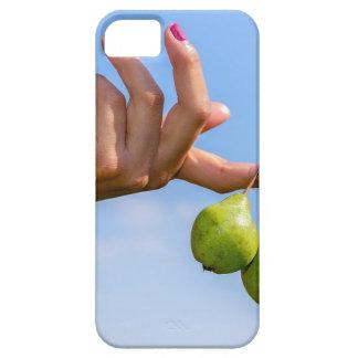 Capas Para iPhone 5 Entregue guardarar duas peras verdes de suspensão