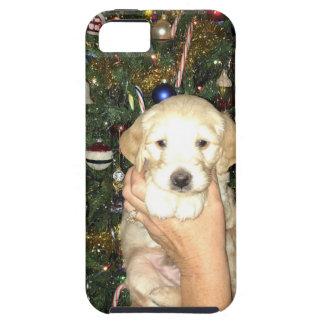 Capas Para iPhone 5 Filhote de cachorro de GoldenDoodle com árvore de