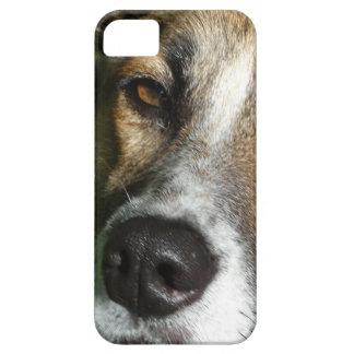 Capas Para iPhone 5 Fim da cara do cão acima do SE do iPhone + iPhone