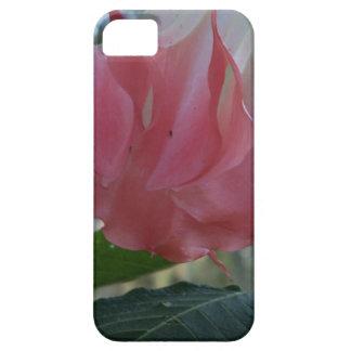 Capas Para iPhone 5 fim do rosa da trombeta dos anjos 205a