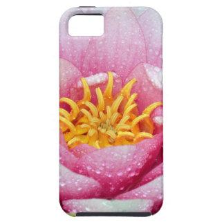 Capas Para iPhone 5 Flor cor-de-rosa do lírio de água