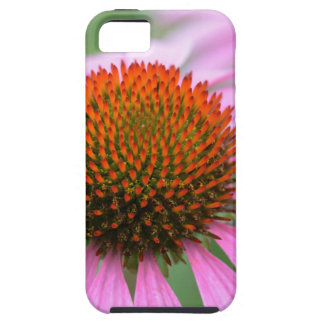 Capas Para iPhone 5 Flor do cone