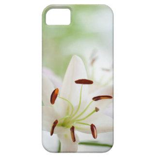Capas Para iPhone 5 Flor do lírio branco inteiramente aberta