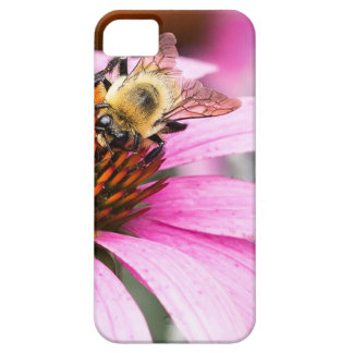 Capas Para iPhone 5 Flor roxa do cone com abelha