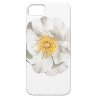 Capas Para iPhone 5 Foto da flor branca