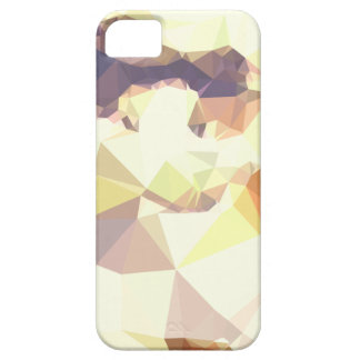 Capas Para iPhone 5 Fundo do polígono do abstrato dourado do trigo