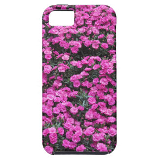 Capas Para iPhone 5 Fundo natural de flores roxas do cravo