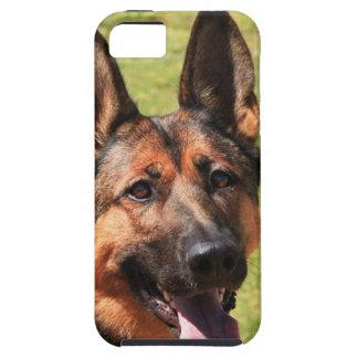 Capas Para iPhone 5 German shepherd de Malinois do belga