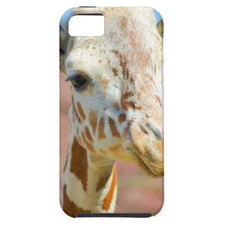 Capas Para iPhone 5 Girafa