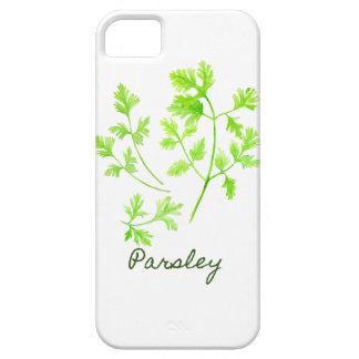Capas Para iPhone 5 Ilustração da salsa da erva da aguarela