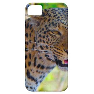 Capas Para iPhone 5 Leopardo manchado