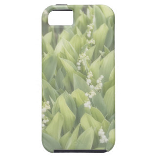 Capas Para iPhone 5 Lírio do remendo da flor do vale na névoa