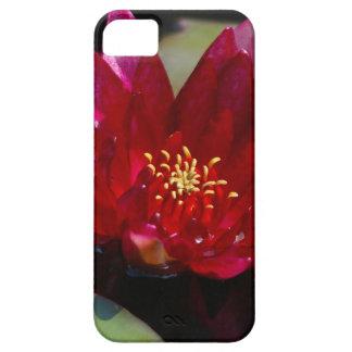 Capas Para iPhone 5 Lotus magenta Waterlily